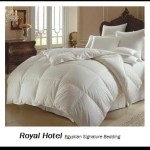 1200 Thread Count King Size Goose Down Alternative Comforter 100% Egyptian Cotton 1200 TC – 750FP – 50Oz – Solid White