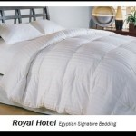 Royal Hotel's 1200 Thread Count Queen Size Siberian Goose Down Comforter 100% Egyptian Cotton 1200 TC – 750FP – 50Oz – Stripe White