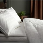 Pinzon Signature Pyrenees Medium Warmth White Goose Down Full/Queen Comforter