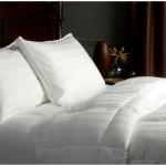 Pinzon Pyrenees Medium Weight PrimaLoft Full/Queen Comforter