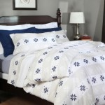 Pinzon 160-Gram Printed Flannel Full/Queen Duvet Cover, Swiss Bliss Blue
