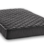 Signature Sleep Essential 6-Inch Twin Mattress, Black