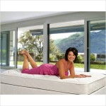 Bundle-62 Slumber Express Orthopedic Back Aid Firm Mattress Size: Queen