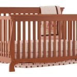 Stork Craft Carrara 4-in-1 Fixed Side Convertible Crib, Oak