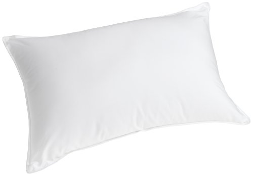Sleep Better Slumber Fresh Polyester King Bed Pillow