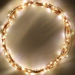 Starry String Lights with 120 Warm White LED Lights on Copper Wire 20 Feet by Deneve® – Lit Length of Strings of Lights 20 Feet (20 ft / 6 m) – Total Length of Strings 32 Feet (32 ft / 10 m) – Bright Amber Warm LED Lights Perfect for Accenting Your Patio, Backyard, Bedroom, Living Room – LED Light Strings Ideal for Outdoor Holiday Dressing or for A Last-Minute Dancing Party – String Lights Outdoor and Indoor Usage – Your Purchase Supports Charity – 1 Year 100% Satisfaction Guarantee!