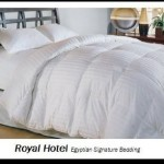 Royal Hotel's King Size Goose-Down-Comforter 650-Fill-Power 100 % Egyptian-Cotton Shell 300TC – Stripe White