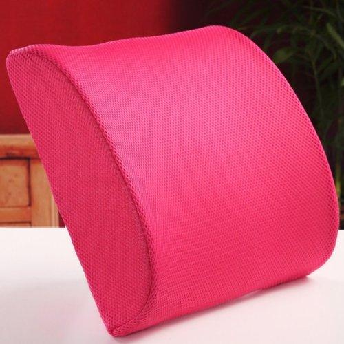 THG Decor Rose Memory Foam Back Pain Support Car Home Office Chair Sofa Cushion Case Lumbar Pillow Cover