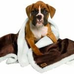Animal Planet Sherpa Pet Blanket, Brown