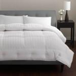 Platinum European Pacific Coast Down Comforter 500 Thread 100% Cotton with Luxurious 650 Pyrénées – Queen 90″ x 98″