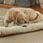 Orvis Futon Dog Bed Cover/Liner / Xlarge Dogs 100+ Lbs., Terracotta,