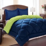 Clara Clark 3-Piece Goose Down Alternative Reversible Comforter Set, Full/Queen, Lime Green/Royal Blue