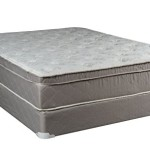 Continental Sleep Mattress, 10″ Pillowtop Eurotop , Fully Assembled Orthopedic Queen Mattress and Box Spring,Body Rest Collection