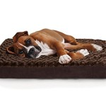 Furhaven Pet NAP Pet Bed Ultra Plush Deluxe Egg-Crate Orthopedic Mat Dog Bed, Large, Chocolate
