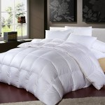 LUXURIOUS 1200 Thread Count GOOSE DOWN Comforter , King Size, 1200TC – 100% Egyptian Cotton Cover, 750 Fill Power, 50 Oz Fill Weight, White Color