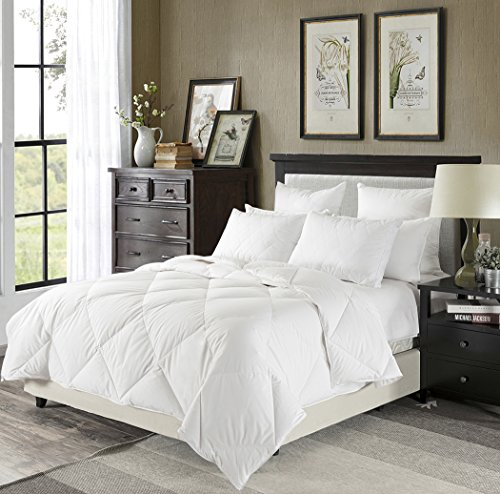 Millihome Light Warmth Down Comforter 230TC Duvet Insert 100% Egpytian Cotton 600 Fill Power, Twin/Twin XL Size