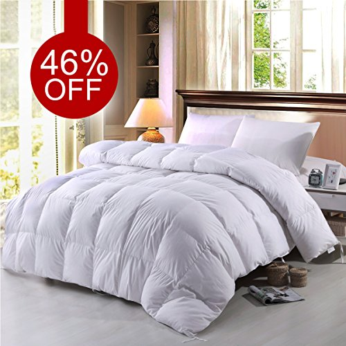 BTWZM Goose Down Comforter, Natural Materials Hypoallergenic Duvet Insert Comforter King Size, 100% Cotton Down Proof Fabric White Comforter (King)