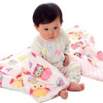 Baby Blanket for Girls Soft Minky With Double Layer Dotted Backing, Lovely Pink Owls Printed 30″x40″