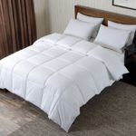 Basic Beyond All Season Warm Goose Down Comforter,650 Fill Power 233 Thread Count 100% Cotton Duvet Insert,,Baffle Box,Classic Greek Key Print,White,Queen Size