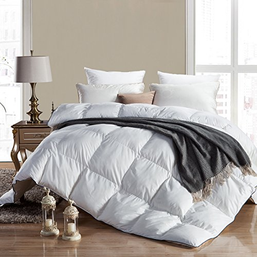 WENERSI FULL / QUEEN Size Goose Down Comforter , 600 Thread Count 100% Cotton Down Proof Cover, 700+FP, 45oz, 600TC, White Color