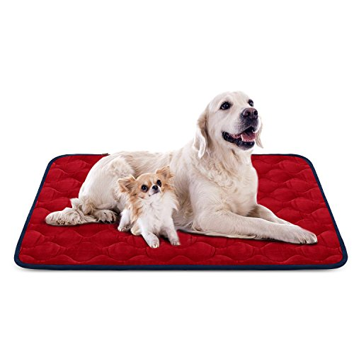 Dog Bed Mat Crate Kennel Orthopedic Pad Car Seat Cover Mattress Cushion Sleeping Soft Durable Resistant Fleece Anti-slip House Floor Beds Extra Large Red by HeroDog