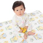 Boritar Baby Blanket Super Soft Minky With Double Layer Dotted Backing, Lovely Green Owls Printed 30″x40″