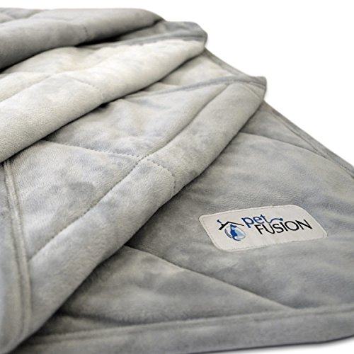 PetFusion Premium Plus Quilted Medium Dog Blanket (42×34″). Light Inner Fill 70GSM, Reversible Gray Micro Plush. [100% soft polyester]