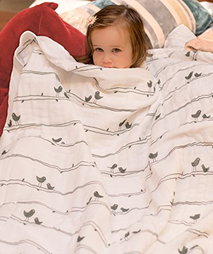 Organic Muslin Baby Toddler Blanket – 100% Hypoallergenic Cotton Bed Blankets – Lucky Birds by Clover & Sage