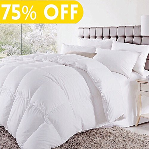 Soft Goose Down Alternative Comforter Luxury Hotel Collection Reversible Duvet Insert with Corner Tab,Warm Fluffy for All Season,White,Queen,88 by 88 Inches