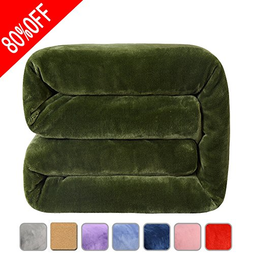 Fleece Bed Blanket Super Soft Warm Fuzzy Velvet Plush Throw Lightweight Cozy Couch Twin/Queen/King Size (King(104-by-90 luches), Green)