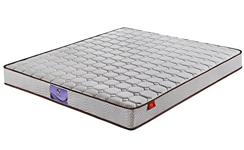 SAVANNA 8 Inch Independently Encased Coil Spring Mattress with CertiPUR-US Certified Foam- Twin Size