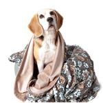 UTEX Premium Pet Dog Blanket for Small,Medium,Large Dogs, Puppy Kitten and Cats, used for Bed, Car, Couch, Sofa,Seat Protector (Sleeping Dog, Medium 47″x 35″)
