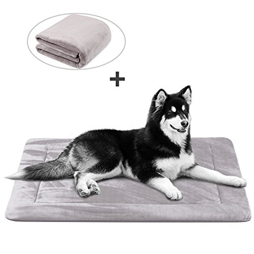 Dog Bed Mat Large Soft Crate Pad 42 IN- 100% Machine Washable Luxury Anti-Slip Mattress Rich Color Grey